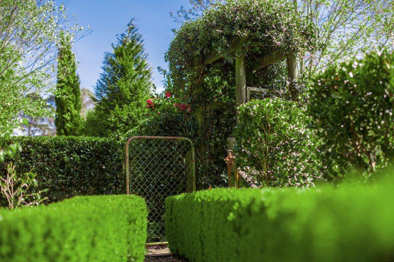the secret garden southern highlands open garden wedding garden venue reception ceremony bowral wildes meadow burrawang robertson country wedding formal garden fountain private venue