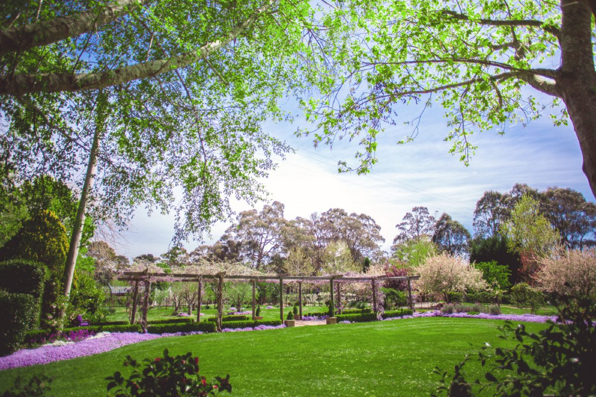 the secret garden southern highlands open garden wedding garden venue reception ceremony bowral wildes meadow burrawang robertson country wedding formal garden fountain private venue wedding photography floral wysteria wisteria arbour marquee