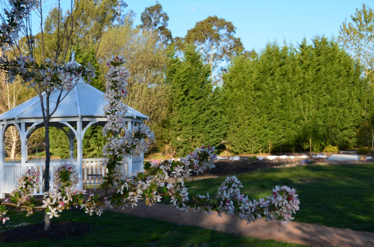 Why have a spring wedding in the southern highlands the for Green spring gardens wedding