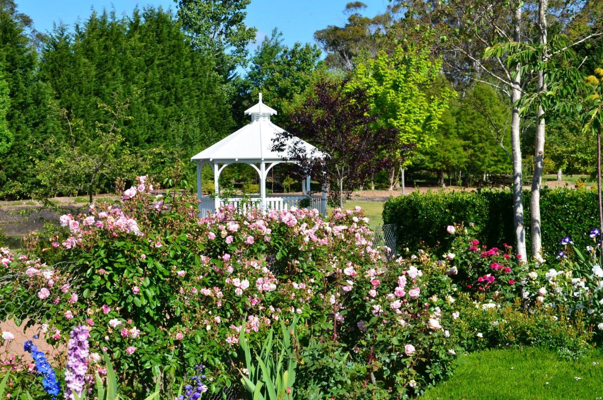 garden wedding southern highlands silver dollar blue gum bowral wedding wedding venue rustic wedding diy wedding wildes meadow burrawang robertson celebrant moss vale mittagong cheap wedding venue local flowers local florist southern highlands florist green wedding